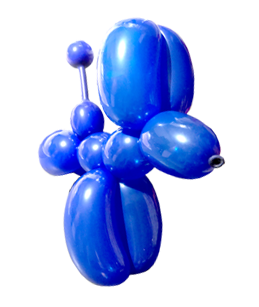 The Joker Entertainment providing balloon modelling in the midlands, Nottinghamshire, Leicestershire, South Yorkshire, Lincolnshire, Boston, Sleaford