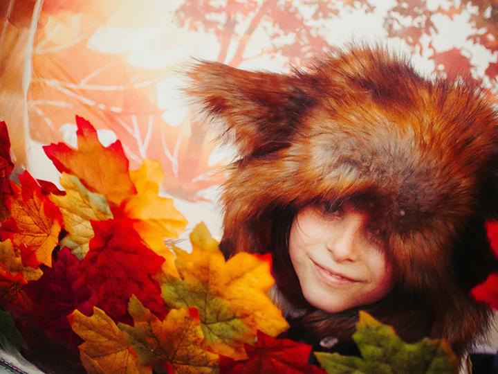 autumn fox